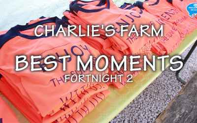 BEST MOMENTS of the 2nd fortnight in Charlie's Farm