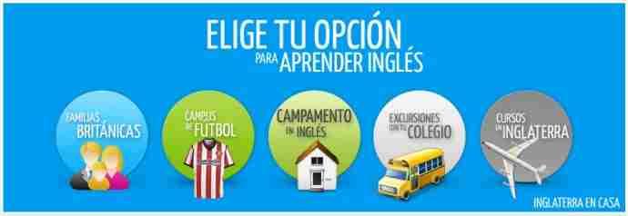 Mira nuestros cursos para aprender inglés en verano