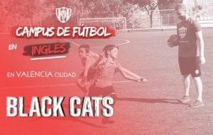 BLACK CATS VALENCIA